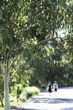 Dos personas que caminan en el aire libre, Sydney, Australia Foto de archivo libre de regalías
