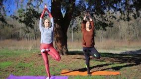 Dos personas que hacen el namaste de la yoga de los pares presentan en la playa en la puesta del sol almacen de video