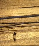 Dos personas que recorren en la playa Fotos de archivo