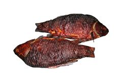 Dos pescados ahumados de Crucian Aislado en el fondo blanco Imagen de archivo