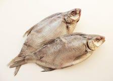 Dos pescados secados Foto de archivo libre de regalías