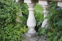 Dos pilares en una verja rodeada por las plantas y la hiedra fotografía de archivo libre de regalías