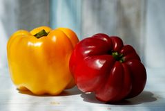 Dos pimientas coloridas Imagen de archivo