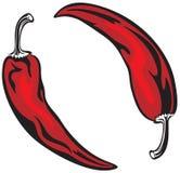 Dos pimientas rojas Foto de archivo