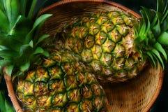 Dos pinapples en una cesta Fotografía de archivo libre de regalías