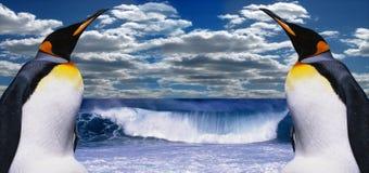 Dos pingüinos en Ant3artida Imagen de archivo libre de regalías