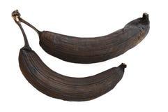 Dos plátanos putrefactos Fotografía de archivo