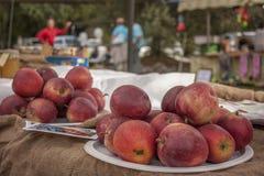 Dos placas de manzanas rojas Fotos de archivo libres de regalías