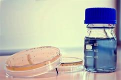 Dos placas de Petri y una botella Foto de archivo libre de regalías