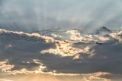 Dos planeadores que dibujan negro remontan en un cielo de la puesta del sol fotografía de archivo libre de regalías