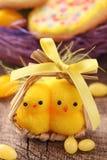 Dos pollos amarillos Imagen de archivo