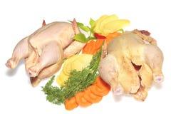 Dos pollos sin procesar aislados Foto de archivo libre de regalías