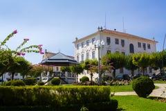 Dos português Vinhos de Figueiro da vila Imagens de Stock Royalty Free