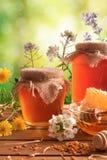 Dos potes de la miel con el fondo verde de la naturaleza con vertica de las flores Fotos de archivo