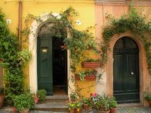Dos puertas verdes en Tuscania Fotografía de archivo libre de regalías