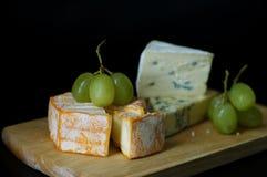 Dos queijos da placa vida ainda Foto de Stock
