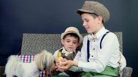 Dos rústicos, los muchachos elegante vestidos juegan con los anadones, los pollos, y un pequeño perro En el fondo un pajar, color almacen de video