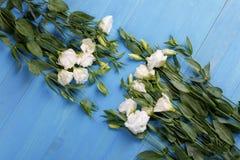 Dos ramos de rosas japonesas se dirigen en uno a en un fondo de madera azul Fotografía de archivo