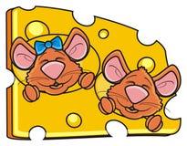 Dos ratones meten el hocico mirar a escondidas de un pedazo de queso Foto de archivo