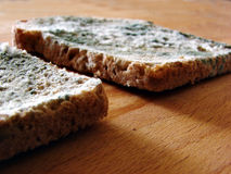 Dos rebanadas de pan mohoso fotos de archivo