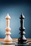 Dos reyes del ajedrez Imagen de archivo libre de regalías