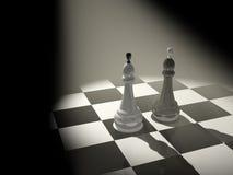 Dos reyes del ajedrez Fotos de archivo