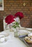 Dos rosas II Fotografía de archivo