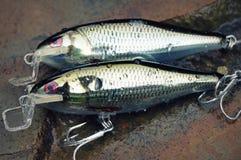 Dos sábalos pesqueros hechos en casa brillantes de los enchufes de los señuelos fotografía de archivo