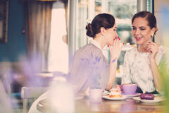 Dos señoras jovenes elegantes que hablan secretos en un café Foto de archivo libre de regalías