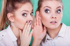 Dos secretos de las partes de los adolescentes, chisme Imagen de archivo