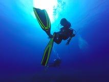 Dos siluetas de los buceadores que nadan sobre el arrecife de coral vivo por completo de las anémonas de mar de los pescados Fotografía de archivo libre de regalías
