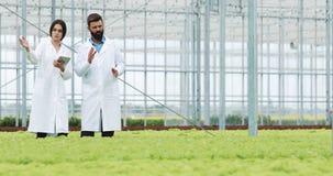 Dos técnicos de laboratorio que hacen la investigación que se coloca en invernadero de la tableta que se sostiene agra Examinan e almacen de video