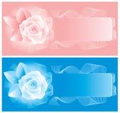 Dos tarjetas con las rosas delicadas. Vector. Fotografía de archivo libre de regalías