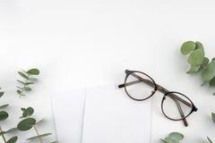 Dos tarjetas y vidrios blancos en blanco adornados con el eucalipto se van Imagen de archivo libre de regalías