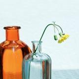 Dos tarros y Wildflower de cristal Foto de archivo