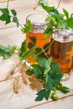 Dos tazas con la cerveza en los saltos verdes, granos del trigo en una tabla de madera imágenes de archivo libres de regalías