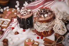 Dos tazas de cacao Foto de archivo libre de regalías