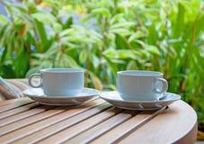 Dos tazas de café en fondo de la naturaleza Imágenes de archivo libres de regalías