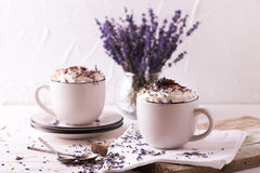 Dos tazas de chocolate caliente con crema azotada Foto de archivo