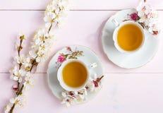 Dos tazas de floraciones de las flores del té y de la primavera de un albaricoque en una tabla de madera rosa clara foto de archivo libre de regalías