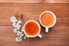 Dos tazas de té y de un brote de la lila Imágenes de archivo libres de regalías