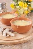 Dos tazones de fuente de la sopa juliana en el vector Imagenes de archivo