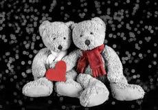 Dos Teddy Lovers Fotografía de archivo libre de regalías