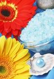 Dos termas vida ainda com flores Fotos de Stock