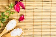 Dos termas vida ainda no fundo de bambu Imagens de Stock