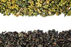 Dos tipos de té Imágenes de archivo libres de regalías