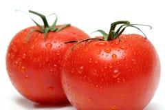 Dos tomates de la vid macros Fotos de archivo libres de regalías