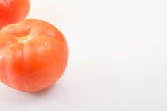 Dos tomates maduros en un fondo ligero apoyado para arriba Imágenes de archivo libres de regalías