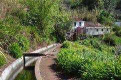 Dos Tornos de Levada: Monte a Camacha, tipo de canais da irrigação, Madeira, Portugal imagem de stock