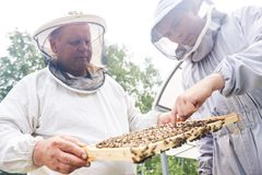 Dos trabajadores del colmenar que comprueban colmenas Fotos de archivo